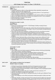 Manager It Audit Resume Samples Velvet Jobs It Auditor