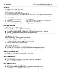 exquisite view resume exemplification essay thesis preliminary   view resume