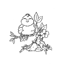 Birds And Flowers Coloring Pages Free Printable For Kids Page Bird