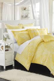 comforter sets vs bed in a bag sets