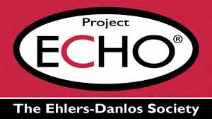 Project ECHO - Supporting Clinicians Supporting Their Patients