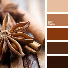 brown and beige, cinnamon color, color combination in the interior, color  selection for