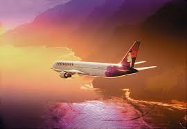Image result for hawaiian airline