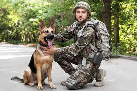 Used by communicators around the world to clarify letters and spellings. Military Dog Names Pet Friendly House
