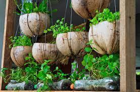 easy ways to start urban gardening