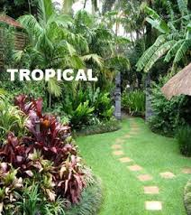 Small Picture Perfect Garden Ideas Tropical With Trees And A Pond L Inside