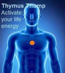 Image result for thymus tap image