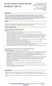 Business Analyst Project Manager Resume Sample