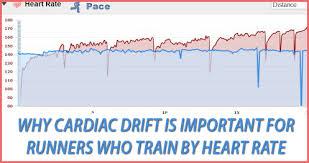 Undertanding Endurance Training Benchmarks