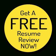Top Notch Resume Writing Service The Resume Dude In Resume Review