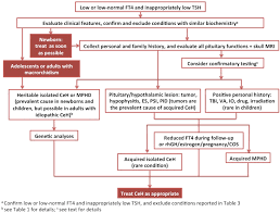 Hypothyroidism Pathophysiology Flow Chart The Diagnosis And Management Of Central Hypothyroidism In