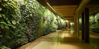inspirational home interiors garden.  interiors green wall design imanada inspirational big and long or vertical garden  download ideas infront of large interior  on home interiors r
