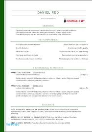 Examples Of Resumes 40 Resume Templates Functional Resume Template Cool Resume 2017 Format