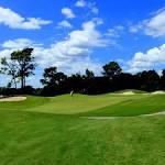 Twisted Oaks Golf Club in Beverly Hills, Florida, USA | Golf Advisor