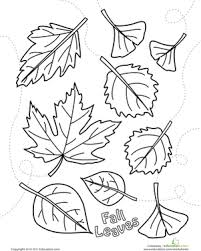 Small Picture Autumn Leaves Coloring Page Worksheet Educationcom