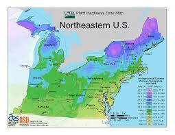 usda plant hardiness zone maps at lots of plantscom