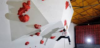 walltopia climbing walls