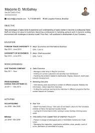 Create Professional Cv Professional Cv Resume Builder Online With Many Templates