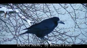 summary and analysis of mending wall by robert frost beaming notes dust of snow analysis by robert frost middot dust of snow summary by robert frost