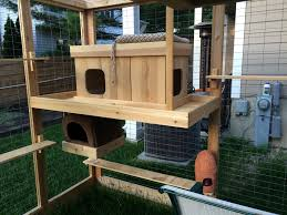 outdoor cat tree house style