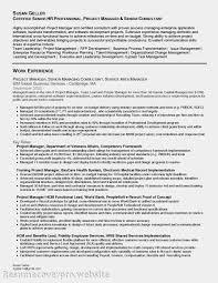 100 Team Leader Resume Sample Director Of Finance Resume