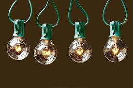 deneve globe string lights with g40 bulbs
