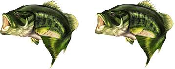 largemouth bass jumping. Modren Largemouth Amazoncom 2 X 22 Throughout Largemouth Bass Jumping