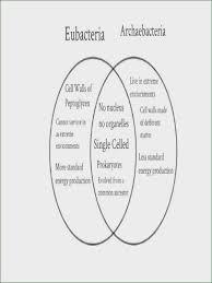 american revolution and french revolution venn diagram archaea vs bacteria venn diagram wiring diagrams click
