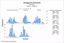 Histogram Template Histogram Template Excel 24 C24gin New Using Data To Improve 18