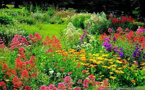 flowers garden. Colorful-beautiful-flower-garden-wallpapers-1920x1200 Flowers Garden