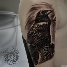 черный ворон тату на плече у парня добавлено иван вишневский
