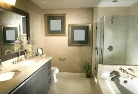 Best Bathroom Remodels Extraordinary Brave Design My Bathroom Remodel Samlife