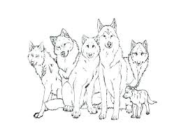 Anime Wolf Coloring Pages Latest Realistic Wolf Coloring Page Anime