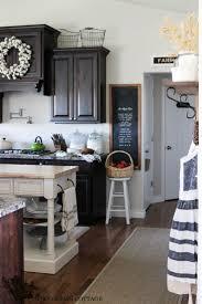 Kitchen With Dark Cabinets 17 Best Ideas About Dark Cabinets On Pinterest Dark Kitchens