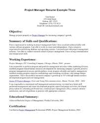 artist essay example using the daij format to write a five  objective statement resume and get ideas to create your the best way for resumes template