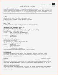 Social Worker Sample Resumes 10 Social Worker Resume Format Payment Format