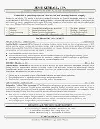 Cpa Resume Sample Simple Public Accounting Resume Public Accountant
