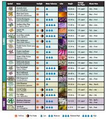rain garden plant list