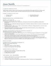 Professional Resume Writers Cost Artemushka Com