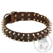 fashion leather siberian husky collar for walking