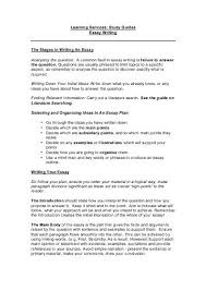 essay writing structure and organisation presentation my essay writing