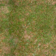 Dirt texture seamless Large Seamless Grass Texture 2048x2048 Youtube Wdc3d Free 3d And 2d Graphic Design Resources