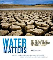 sample essays high school the importance of water life both  essays on shortage of water opinion of professionals