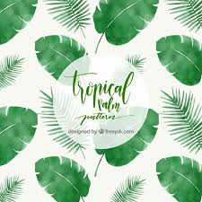 Palm Leaf Pattern New Tropical Palm Leaf Pattern Vector Free Download
