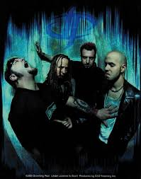 Drowning Pool - discography, line-up, biography, interviews, photos