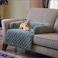 sofa pet covers. Interesting Sofa Sofa Pet Cover Fresh 23 Best Covers For Sofa Ava Furniture Intended C