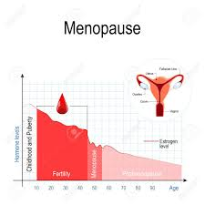Menopause Hormone Levels Chart Menopause Chart Estrogen Level And Aging Fluctuation Of Hormones