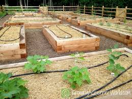 Small Picture Raised Bed Vegetable Garden Plans erikhanseninfo