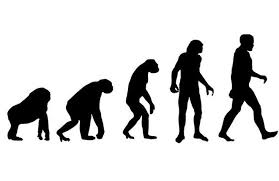 humans really are still evolving  study finds