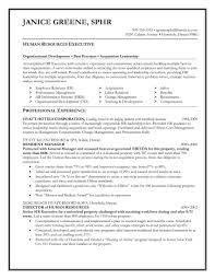 Professional Resume Summary For Human Resource Generalist Resources